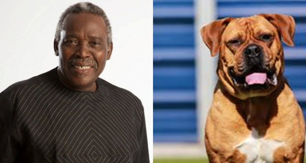 """A White Woman Once Said A Dog Was Better Me""- Olu Jacobs"