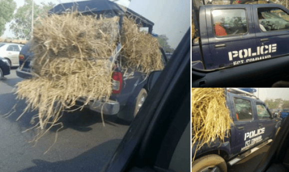 Nigerian Man Cries Out On Facebook After Seeing Nigerian Police Using Their Van To Carry Grass To Go Feed Fulani Herdsmen Cows (Photos)