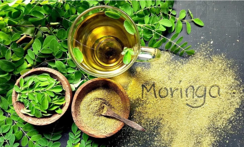 Health Benefit Of Moringa Oleifera And How To Cure Common Diseases With The Cleansing Tree