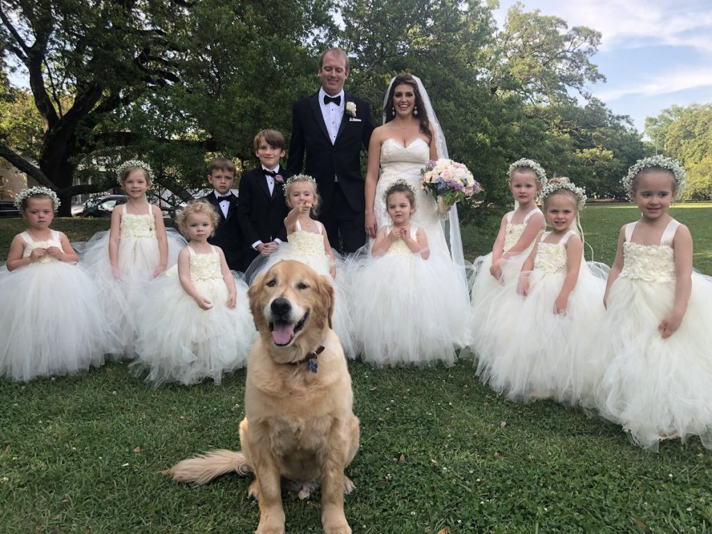 """Checkout Wedding Pictures """"Photo Bombed"""" By An Innocent Dog"""