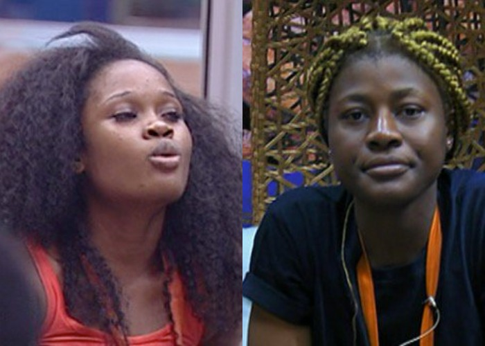 BBNaija: Alex and Cee c at war in the house (Watch Video)