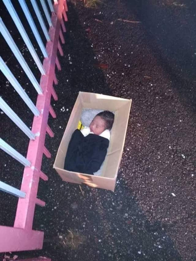 See The Super Cute Baby A Facebook User Found In A Carton