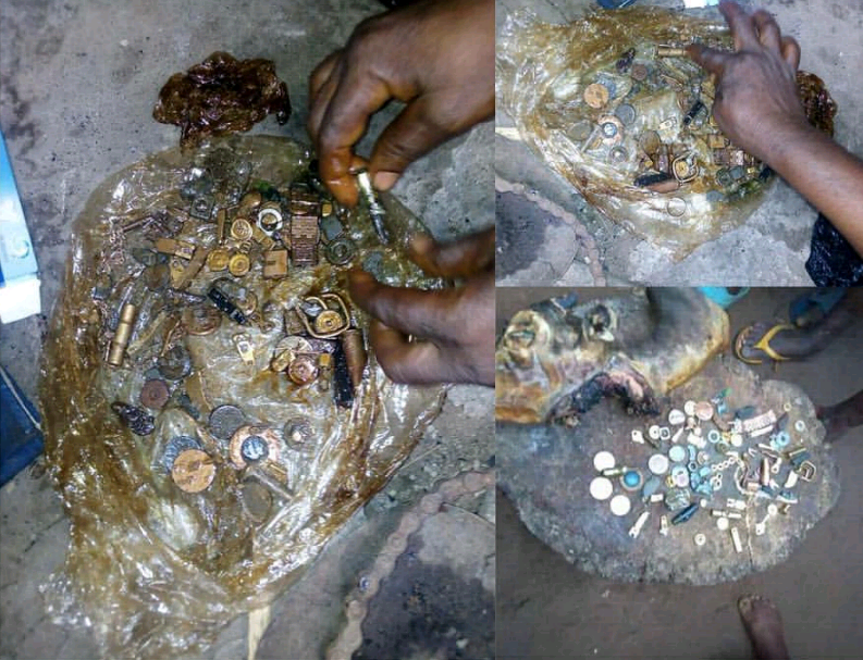 Wedding Rings, Old Pennies And Other Items Found Inside A Goat's Intestine