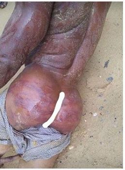Married Plumber Stripped and Flogged in the Buttocks, For Raping 9yr old Girl in Bayelsa Photos)
