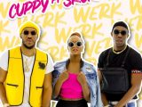 DJ Cuppy Werk ft Skuki Mp3 Download