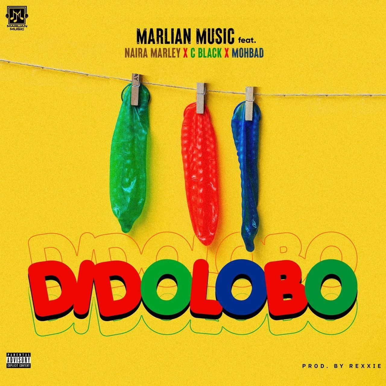 Naira Marley Didolobo Mp3
